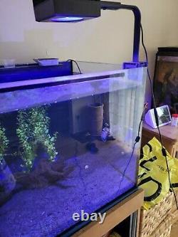 Red Sea Reefled 50 Unité De Lumière Et Bras De Montage. Éclairage Led Aquarium Des Récifs Marins